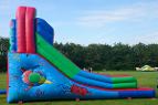 link to celebration inflatable slide hire