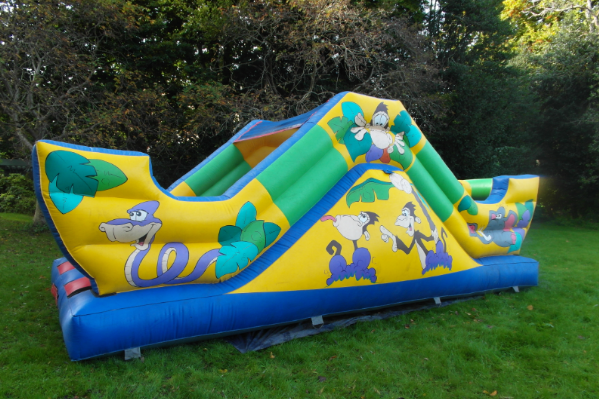 Jungle Combi Bouncy Castle small 3